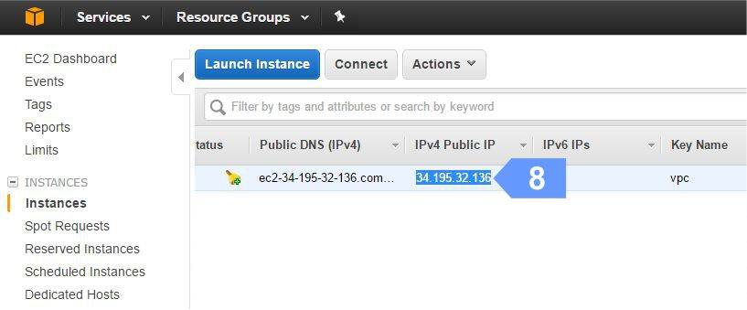 Copy Elastic IP address of your Amazon EC2 instance.